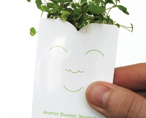 diseño gráfico ecológico